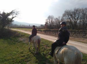 Kleine Verschnaufspause für die Pferde